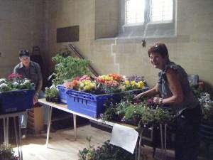 westbury-leigh-village-association-open-day-plant-stall